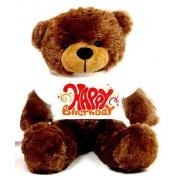 Brown 2 feet Big Teddy Bear wearing a Happy Birthday T-shirt