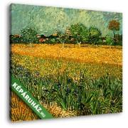 Vincent Van Gogh: Arles látképe íriszekkel az előtérben, 1888 (30x25 cm, Vászonkép )