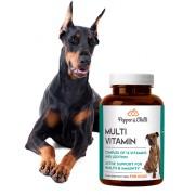 PepperChilli Multivitamínové tablety -30%: multivitamín s biotinem pro zdraví vašeho pejska!