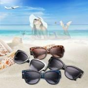 Caja Gafas De Sol De Las Gafas De Sol Grandes Brillantes Del Ojo De Gato Negro C1 E-ibuybuybuy