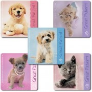 Rachael Hale Patient Stickers - 100 Per Pack by SmileMakers