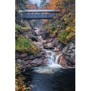 White Mountain Puzzles Covered Bridges - 1000 Piece Jigsaw Puzzle