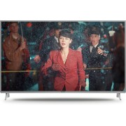 Panasonic TX-55FX613E - 4K TV