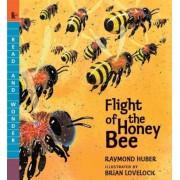 Flight of the Honey Bee, Paperback
