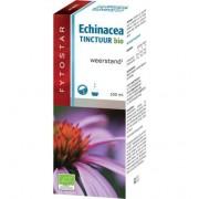 Fytostar Echinacea Druppels (100ml)