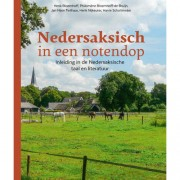 Nedersaksisch in een notendop - Henk Bloemhoff, Philomène Bloemhoff-de Bruijn, Jan Nijen Twilhaar, e.a.