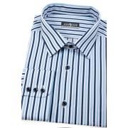 Pánská proužkovaná košile s dlouhým rukávem Avantgard 511-6501-43/44/194