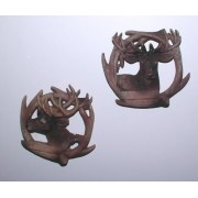 Jeleń - rogi
