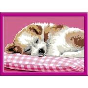 Раскрашивание по номерам «Спящий щенок»