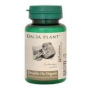Drojdie cu seleniu organic 60cpr DACIA PLANT
