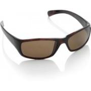 Polaroid Round Sunglasses(Brown)