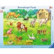 Puzzle animalele mele, 11 piese