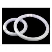 Żarówka RFL pierścieniowa 22W
