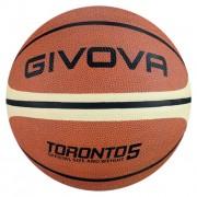 Minge baschet Toronto, nr. 5, GIVOVA