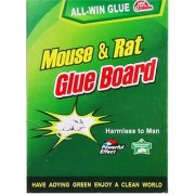Mouse Rat Cockroaches Chipkali Insects Trap Glue Set Of 2 Pcs Size-32cm X 21cm