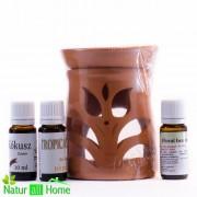 Pachet candelă de aromaterapie și 3 sticluțe de ulei de parfum FLORAL BEAUTY, Tropical și Cocos