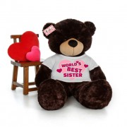 5 feet big chocolate brown teddy bear wearing Worlds Best Sister T-shirt