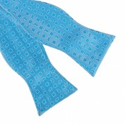 Papion bleu self tie David