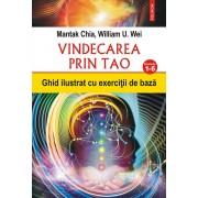 Vindecarea prin Tao. Ghid ilustrat cu exercitii de baza. Nivelurile 1-6 (eBook)