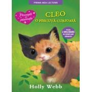 Cleo, o pisicuta curioasa