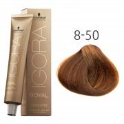 Schwarzkopf - Igora - Royal - Absolutes - 8-50 Lichtblond Goud Natuur - 60 ml