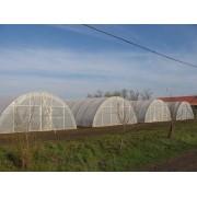 Folie S1N stabilizata UV, 8.5x0.13x60