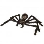 Svart Hårig Spindel Dekoration
