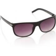 Trends Rectangular Sunglasses(Violet)