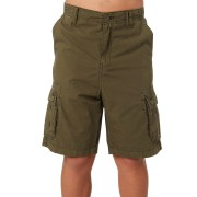 Swell Kids Boys Flow Walkshort Green