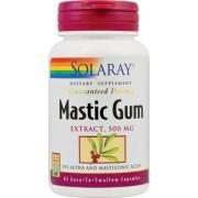 Mastic Gum 500mg 45 cps