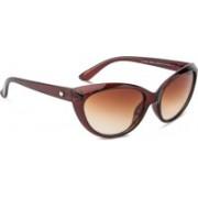 Rafa Cat-eye Sunglasses(Brown)