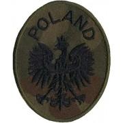 Naszywka na mundur Godło polowe Orzeł POLAND elipsa rzep