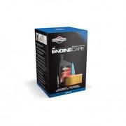 Kit Intretinere Motoare Briggs&Stratton , cod 992235 , potrivit pentru motoarele 800/ 850/850IC/875 series