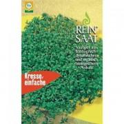 Seminte Bio de creson, ReinSaat