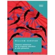 Tanarul neinfricat de la trapezul zburator si alte povestiri - William Saroyan