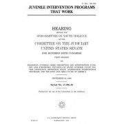 Juvenile Intervention Programs That Work