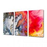 Tablou Canvas Premium Abstract Multicolor Culori Amestecate Decoratiuni Moderne pentru Casa 3 x 70 x 100 cm