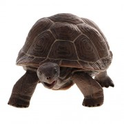 MagiDeal Lifelike PVC Plastic Reptile Animal Model Figurine Kids Toy Playset Story Telling Prop Collectibles Tortoise #3