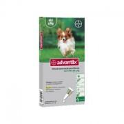 Advantage 40 Cão 4kg - 4 Pipetas - Bayer