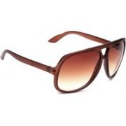 Eyeland Aviator, Round, Oval, Wayfarer Sunglasses(Brown, Clear)