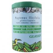 Guayapi Maytenus Ilicifolia - Troubles digestifs