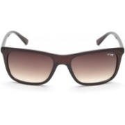 IRUS by IDEE Rectangular Sunglasses(Brown)