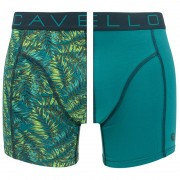 Boxershorts 2-pack Leafs & Green
