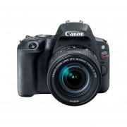 Cámara Canon DSLR Eos Rebel Sl2 Combo Con Lente 18 55 Y 75 300