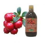 Sangalli Berrysan Succo di Cranberry Bio 500ml