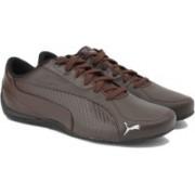 Puma Drift Cat 5 Carbon Sneakers(Brown)