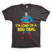 Superman - I´m Kind Of A Big Deal T-Shirt, Basic Tee