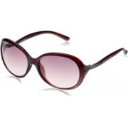Park Avenue Oval, Round, Wrap-around Sunglasses(Red, Clear)