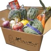 【定期購入】食育ソムリエが選ぶ旬の野菜ボックス!(野菜8種以上、加工品1品)