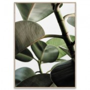 Green Home 03 poster 50x70